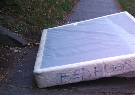Who Will Take Mattress by Nobody Wants To About Your Bedbugs Strictly
