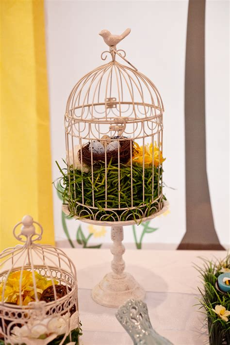 how to decorate a birdcage home decor bird cage decor life begins with the birds and bees baby