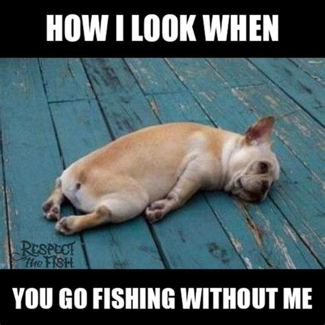 Funny Fish Memes - 22 outrageously funny fishing memes that only anglers can