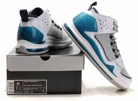 basketball shoes evolution discount air evolution 85 white blue grey nets