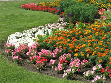 how to have a beautiful flowerbed in 3 easy steps moms need to know