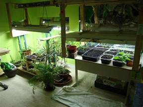 Apartment Setups Vegans Living Off The Land February 2015