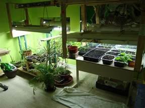 Organic Indoor Herb Garden - indoor garden lunarharvest
