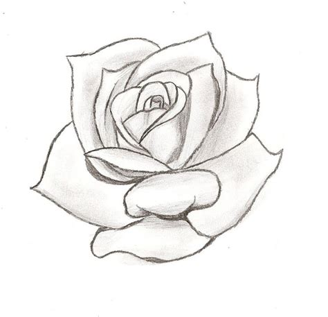 rose tattoo stencil designs tattoo stencils pinterest