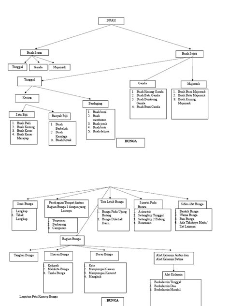 Peta Konsep morfologi tumbuhan