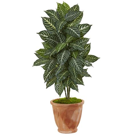nearly indoor zebra artificial plant in terracotta