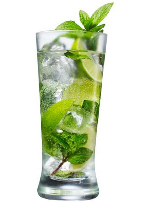 mojito cocktail mojito recipe dishmaps