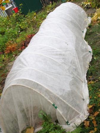 wann pflanzen winterfest machen winterfest machen gartengestaltung terrassen wege