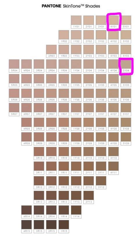 sephora color id re so i searched my number which is 5y