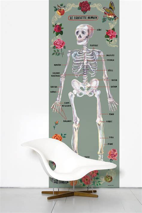 le squelette humain wallpaper wall paper multicoloured
