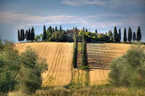 gladiator film locations italy the gladiator house if this row of italian cypress trees