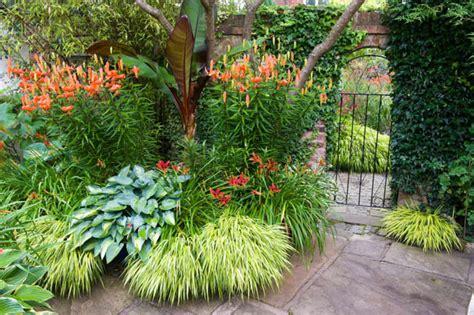 a shade loving border idea with hemerocallis hosta and