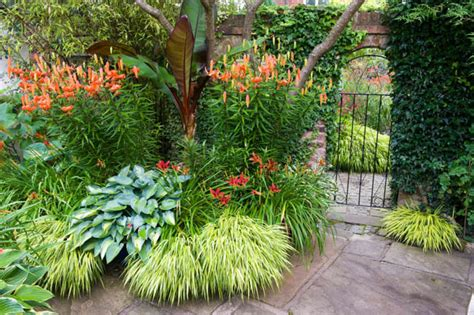 A Shade Loving Border Idea with Hemerocallis, Hosta and