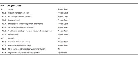 rebranding project plan template christifurrr project plan for a branding project
