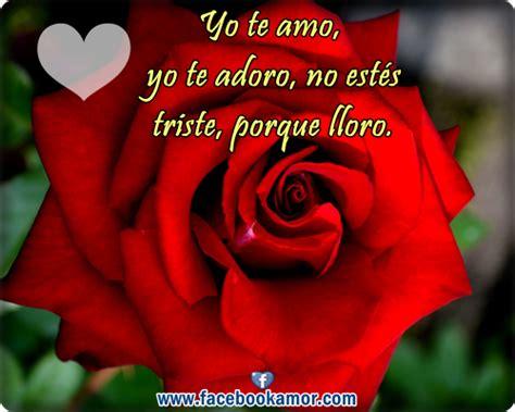 imagenes de rosas rojas con frases bonitas postales de rosas rojas para el amor im 225 genes bonitas de