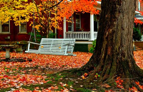 d by swing house in autumn with tree swing hd wallpaper and