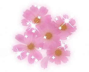 wallpaper bergerak gambar bunga 10 gambar animasi bunga mawar gambar animasi gif swf