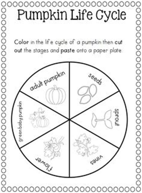 coloring pages of life cycle of pumpkin pumpkin life cycle coloring pages printable sketch