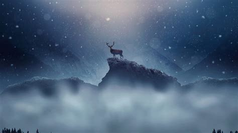 christmas deer snowfall wallpapers hd wallpapers id