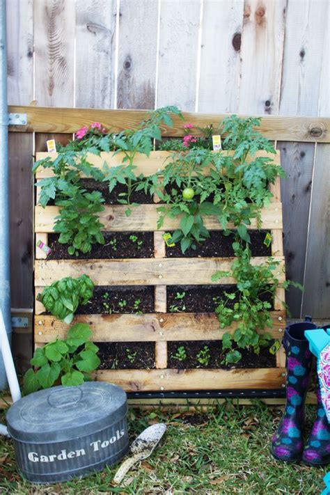 how to make a vertical pallet vegetable herb garden