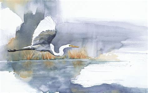 painting the sea people and birds with watercolor basics when i m not working as a biologist i paint watercolor