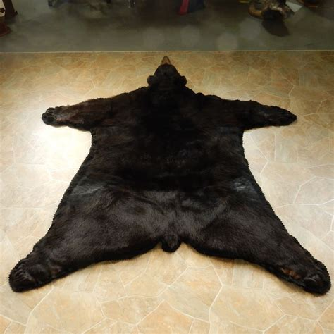black size rug mount 14601 the taxidermy store
