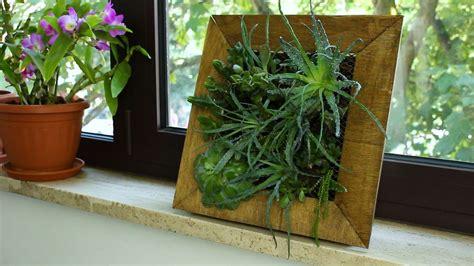 fashion  frame planter  succulents