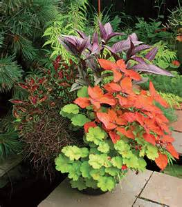 potted plants the fine art of container gardening life home magazine