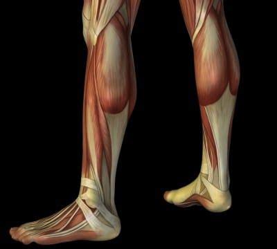 dolore polpaccio interno dolore al polpaccio sinistro o destro