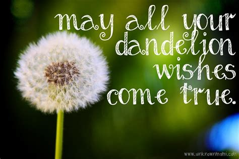Dandelion Wishes dandelion wishes unknown mami by claudya martinez