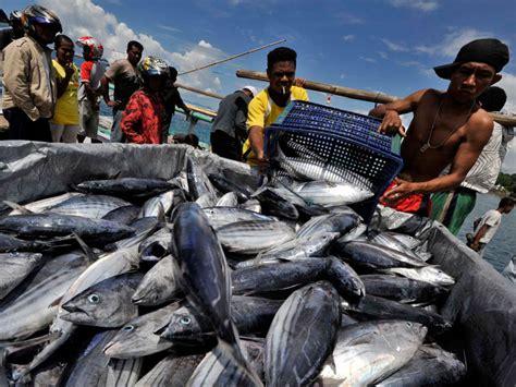 Freezer Untuk Ikan cold storage untuk perikanan freezer untuk perikanan