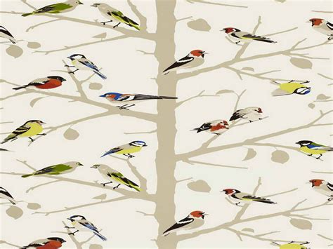 bird wallpaper for walls walls bird wallpaper for walls powder room bird wallpaper for walls decor wallpapers for home