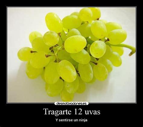 imagenes graciosas uvas im 225 genes y carteles de uvas pag 15 desmotivaciones