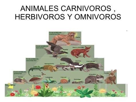 imagenes animales herbivoros carnivoros y omnivoros cuales son los animales carnivoros herbivoros y omnivoros