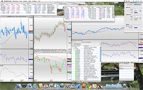 web charting software best forex charting software etibavubanako web