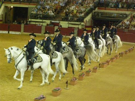 httpzoofilia mujer ensartada por caballo caballos follando chicas