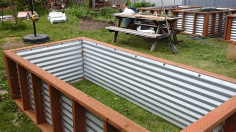 corrugated metal raised garden beds corrugated steel raised garden beds garden ftempo