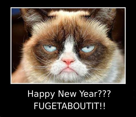grumpy cat new year grumpy cat new years 28 images happy new year grumpy