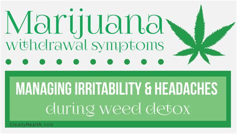 Cannabis Detox Symptoms by Marijuana Withdrawal Symptoms Managing Irritability And