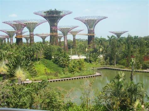 botanic gardens picture of marina bay sands skypark