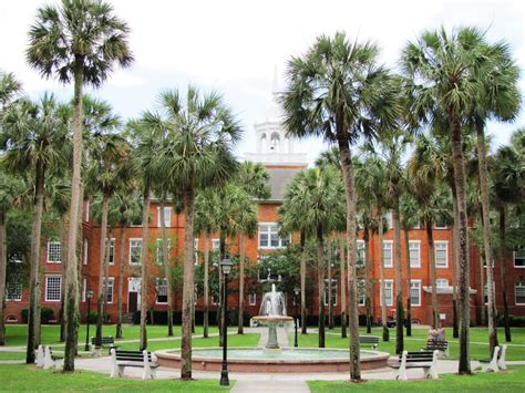 Stetson Mba Admissions by Stetson Admissions And Acceptance Rate