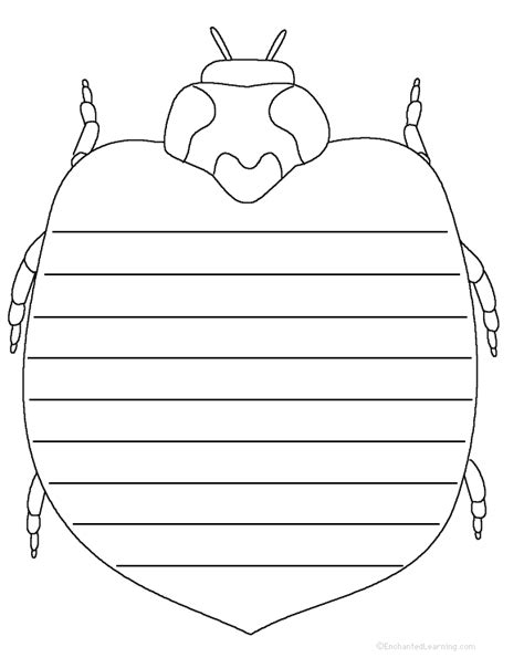 printable insect writing paper writing worksheets insects at enchantedlearning com