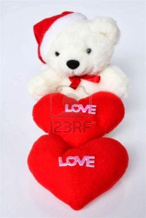 imagenes bonitos de peluches imagenes de peluches lindos para regalar imagenes de amor hd