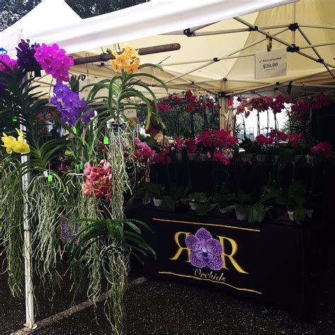 Palm Gardens Green Market by R R Orchid Eat Palm Everything That Matters