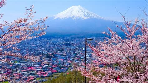 Mukena Bali Narita Coklat Best Price jetstar japan sale free return flights escape