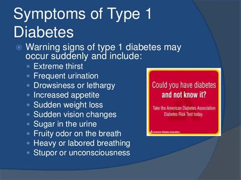 the type 1 diabetes self care manual a complete guide to type 1 diabetes across the lifespan books type 1 diabetes