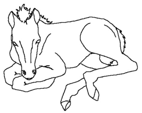 coloring pictures of baby horses free printable horse coloring pages for kids coloring