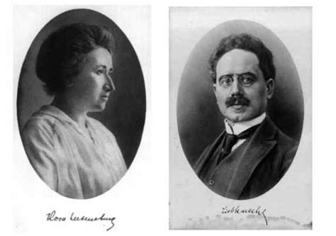 rosa a graphic biography of rosa luxemburg rosa luxemburg