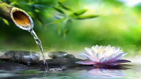 imagenes zen relaxing piano music sleep music water sounds relaxing