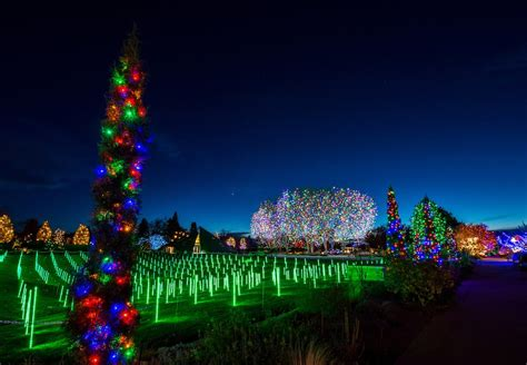 Denver Botanic Gardens Blossoms Of Light 10 Unique Things To Do In Denver This Weekend
